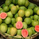 drf-guava
